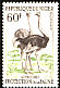 Common Ostrich Struthio camelus  1960 Fauna protection