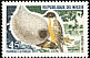 Little Weaver Ploceus luteolus  1967 Birds
