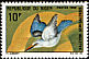 Woodland Kingfisher Halcyon senegalensis  1968 Birds
