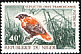 Northern Red Bishop Euplectes franciscanus  1970 Birds