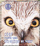 Northern Saw-whet Owl Aegolius acadicus  1998 Italia 98