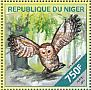 Spotted Owl Strix occidentalis