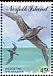 Wedge-tailed Shearwater Ardenna pacifica  1994 Sea birds Strip
