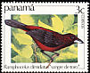Crimson-backed Tanager Ramphocelus dimidiatus  1981 Birds