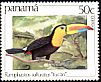 Keel-billed Toucan Ramphastos sulfuratus  1981 Birds