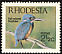 Half-collared Kingfisher Alcedo semitorquata  1971 Birds of Rhodesia