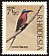Southern Carmine Bee-eater Merops nubicoides  1971 Birds of Rhodesia