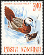 White-headed Duck Oxyura leucocephala  1977 Protected animals 6v set