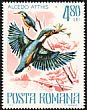 Common Kingfisher Alcedo atthis  1977 Protected animals 6v set