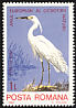 Little Egret Egretta garzetta  1980 European nature protection 6v set
