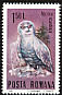 Snowy Owl Bubo scandiacus  1985 Protected animals 8v set