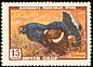Black Grouse Lyrurus tetrix  1957 Russian wildlife 6v set