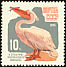 Great White Pelican Pelecanus onocrotalus  1964 Moscow Zoo 7v set