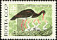 Black Stork Ciconia nigra  1969 Belovezhskaya Pushcha nature reserve 5v set