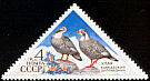 Caucasian Snowcock Tetraogallus caucasicus  1973 Caucasus and Voronezh nature reserves 5v set