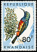Regal Sunbird Cinnyris regius  1967 Birds of Rwanda
