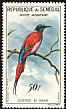 Northern Carmine Bee-eater Merops nubicus