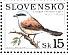Red-backed Shrike Lanius collurio  1999 Nature conservation - birds Sheet