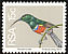 Greater Double-collared Sunbird Cinnyris afer  1974 Definitives