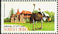 Common Ostrich Struthio camelus  1998 The Western Cape 5v booklet