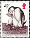 Chinstrap Penguin Pygoscelis antarcticus  1996 Chinstrap Penguin
