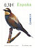 European Bee-eater Merops apiaster  2008 Flora and fauna Booklet, sa