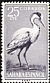 Grey Heron Ardea cinerea  1959 Birds
