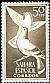 Rock Dove Columba livia  1961 Birds