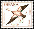 Ruddy Shelduck Tadorna ferruginea  1967 Stamp day