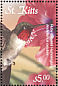 Ruby-throated Hummingbird Archilochus colubris  2001 Caribbean fauna and flora
