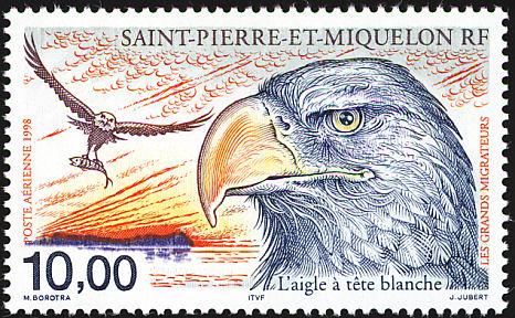 http://www.birdtheme.org/showimages/stpierre/i/spm199801l.jpg