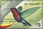 Purple-throated Carib Eulampis jugularis  1989 Birds of St Vincent