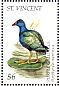 Purple Gallinule Porphyrio martinica  1995 Birds