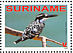 Pied Kingfisher Ceryle rudis  2008 Birds Sheet