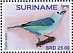 Blue-grey Tanager Thraupis episcopus