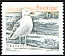 European Herring Gull Larus argentatus  2001 Birds