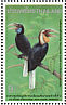 Plain-pouched Hornbill Rhyticeros subruficollis