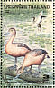 Lesser Whistling Duck Dendrocygna javanica  1996 Ducks Sheet