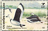Cotton Pygmy Goose Nettapus coromandelianus  1996 Ducks Sheet
