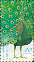 Green Peafowl Pavo muticus  2008 Peacocks Sheet