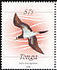 Brown Booby Sula leucogaster  1988 Definitives
