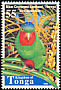 Blue-crowned Lorikeet Vini australis  1998 Birds