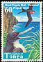 Great Frigatebird Fregata minor  1998 Birds