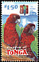 Maroon Shining Parrot Prosopeia tabuensis  2002 Red Shining Parrot