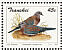 Laughing Dove Spilopelia senegalensis  1993 Doves Sheet