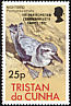 Broad-billed Prion Pachyptila vittata  1982 Overprint 1ST PARTICIPATION... on 1977.01