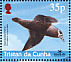Spectacled Petrel Procellaria conspicillata  2001 BirdLife International Sheet