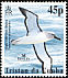 Atlantic Yellow-nosed Albatross Thalassarche chlororhynchos  2003 BirdLife International White frame