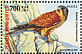Common Kestrel Falco tinnunculus  2004 World environment day Sheet