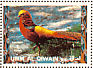 Golden Pheasant Chrysolophus pictus  1972 Birds